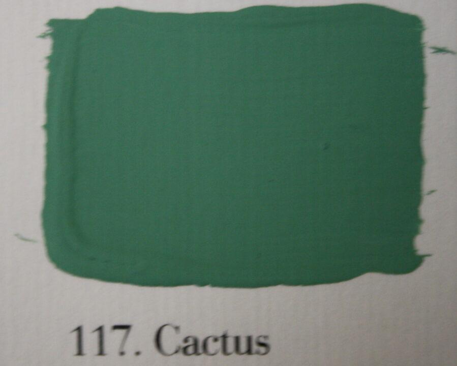 117. Cactus 899x720 - Krijt Behang