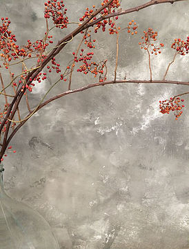 'l Authentique betonlook verf 't Maaseiker Woonhuys
