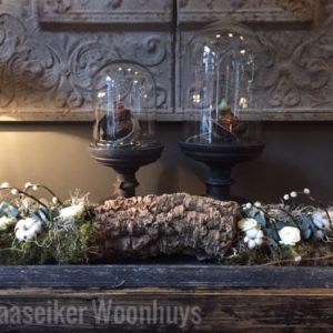groenworkshop 't Maaseiker Woonhuys