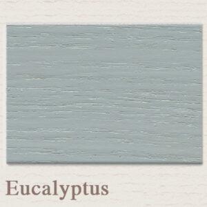 Painting the Past outdoor Eucalytus 't Maaseiker Woonhuys