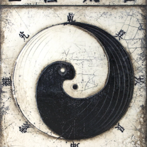 Sid Dickens T394 Yin and Yang 't Maaseiker Woonhuys