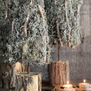 kerstboompje 't Maaseiker Woonhuys