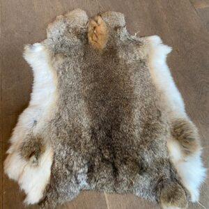 konijnenvachtje 't Maaseiker Woonhuys