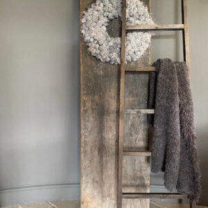 Aura Peeperkorn ladder 't Maaseiker Woonhuys